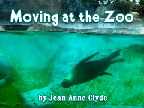 Moving at the Zoo