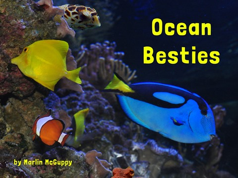 Ocean Besties