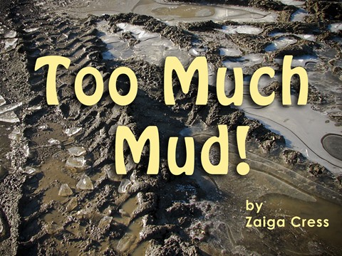 Too Much Mud