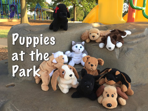 Puppies at the Park