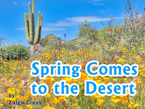 Spring Comes to the Desert